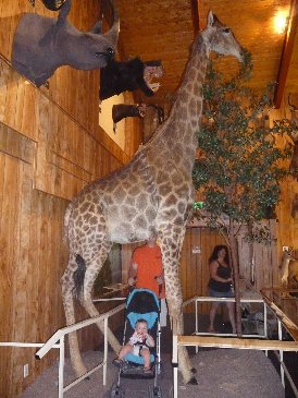Alex and Giraffe.JPG