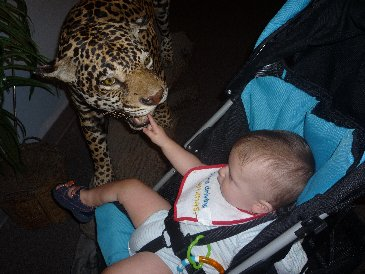 Alex and Jaguar.JPG