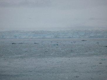 Cruise Hubbard Glacier.jpg