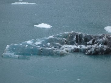 Cruise Iceberg.jpg