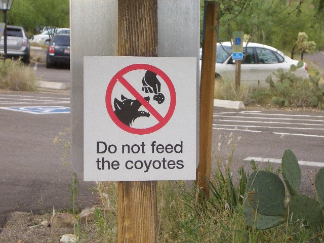 Do Not Feed.jpg