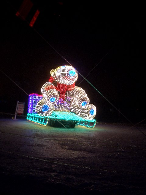 Festival of Lights 2.jpg